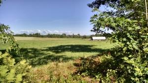 glimpse of Mitchell's farm